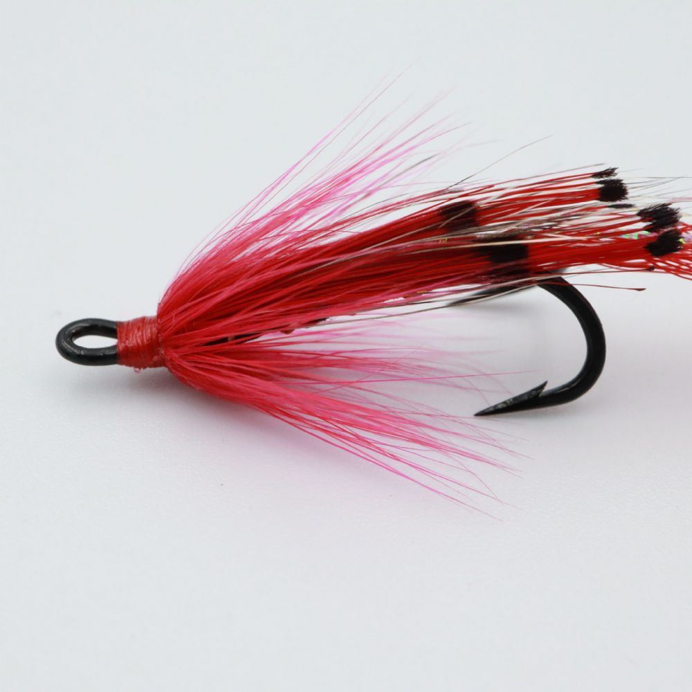 Ally's Shrimp Red